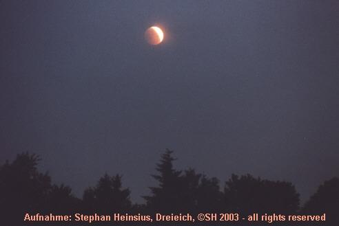 Eclipse über Bäumen